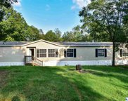 16 Claypit Drive, Anniston image