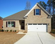 291 Cedar Hollow Lane, Irmo image