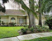 14924 Redcliff Drive, Tampa image