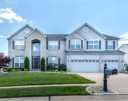 487 Speyer  Place, St Charles image