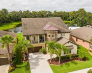 13831 Moonstone Canyon Drive, Riverview image