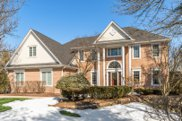 14901 Crystal Springs Court, Orland Park image
