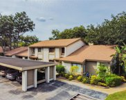 1723 Cypress Trace Drive, Safety Harbor image
