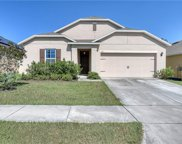 154 Lazy Willow Drive, Davenport image