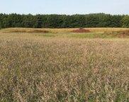 xxxx Pine Bluff (site15) Rd  NW, Pine Island image