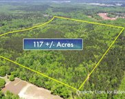 Emmett Freeman Rd Unit 117 Acres, Senoia image