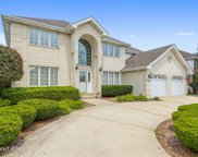 8024 Mallow Drive, Tinley Park image