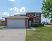 828 Cats Eye Drive, Fort Worth image
