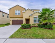 8227 Bird Whistle Lane, Land O' Lakes image