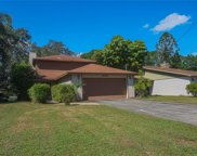 11736 Forest Hills Drive, Tampa image