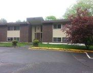 229 Bacon Pond  Road Unit 151, Woodbury image