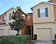 5016 White Sanderling Court, Tampa image