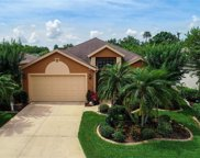 5807 New Paris Way, Ellenton image