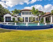 970 Aqua Cir, Naples image