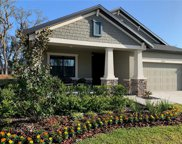 11234 Paddock Manor Avenue, Riverview image