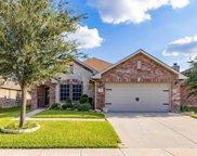 313 Amethyst Drive, Fort Worth image