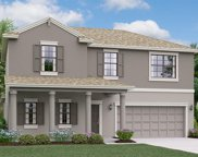 21874 Crest Meadow Drive, Land O' Lakes image