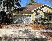 12319 Winding Woods Way, Lakewood Ranch image