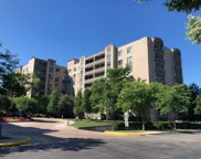 4545 West Touhy Avenue Unit 317, Lincolnwood image