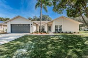 12334 Yellow Rose Circle, Riverview image