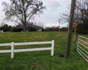 315,321 Cemetery Street - Corner Lot, White Pine image