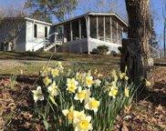 258 County Road 941, Cedar Bluff image