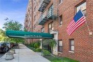 7423 Ridge Boulevard Unit 5H, Brooklyn image