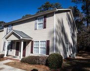 1117 Piney Woods Street, Columbia image