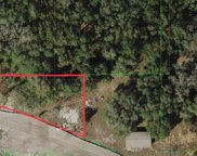 18205 State Road 52, Land O' Lakes image