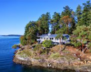 240 Myers Rd, Friday Harbor image
