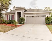 13233 Mandalay Place, Spring Hill image
