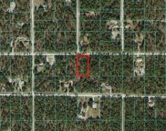 Sw 78th Place, Dunnellon image