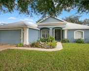 315 Sabal Springs Court, Debary image
