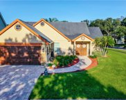 14501 Thornfield Court, Tampa image