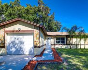14609 Knoll Ridge Drive, Tampa image