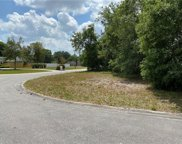 11904 Sugarberry Drive, Riverview image