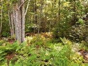 Lot 20 Beaver Path, Thornton image