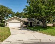 2024 Rainbow Farms Drive, Safety Harbor image