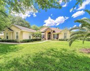 712 Charter Wood Place, Valrico image