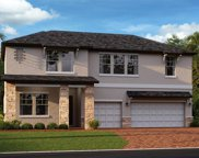 21505 Snowy Orchid Terrace, Land O' Lakes image