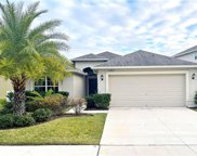 11602 Mansfield Point Drive, Riverview image
