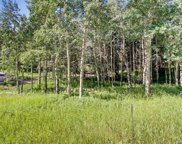 6753 Snowshoe Trail, Evergreen image