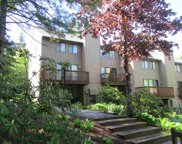 6 Windsor Hill Way Unit #53, Waterville Valley image