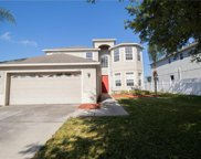 3139 Chessington Drive, Land O' Lakes image