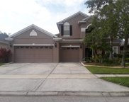 17835 Olive Oak Way, Orlando image
