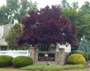 189 Willow  Springs Unit 189, New Milford image