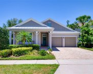 8802 Peachtree Park Court, Windermere image