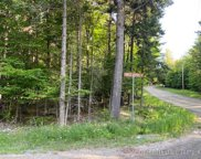 241 Forest Depths Road, Beaver Cove image
