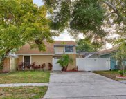 10306 Pennytree Place, Tampa image