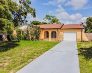 6318 Covewood Drive, Spring Hill image